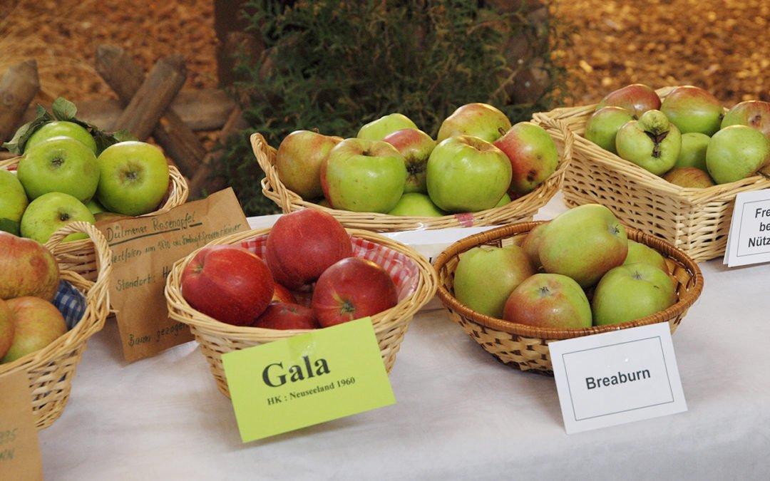 So. 07. 10. 2018 | Die Geschichte des Apfels – eine kulinarische Reise …